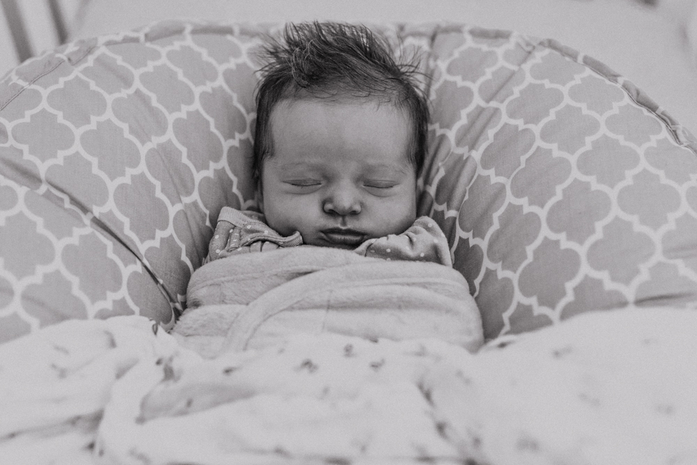 Baby Joey @ Home-1
