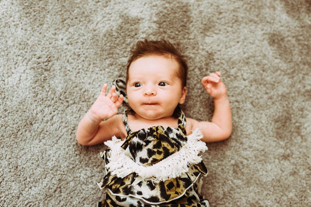 Baby Joey @ Home-5