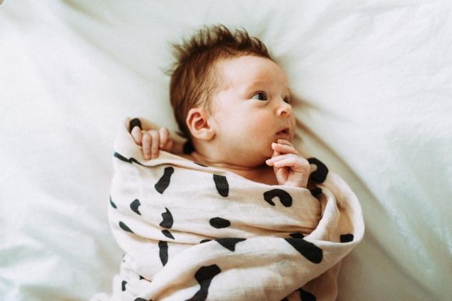 Baby Joey @ Home-57