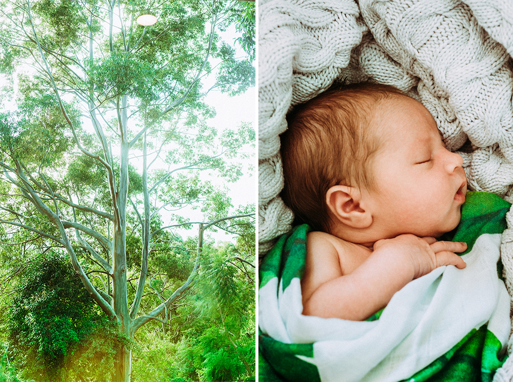 Baby_Beau_ViveashPhotography_BLOG-96